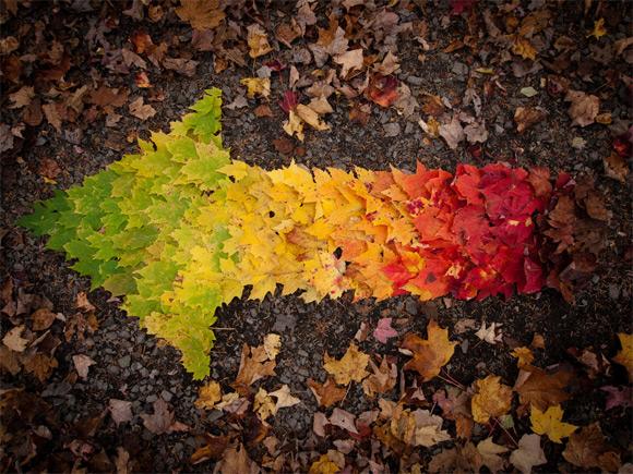 Spectre d'automne