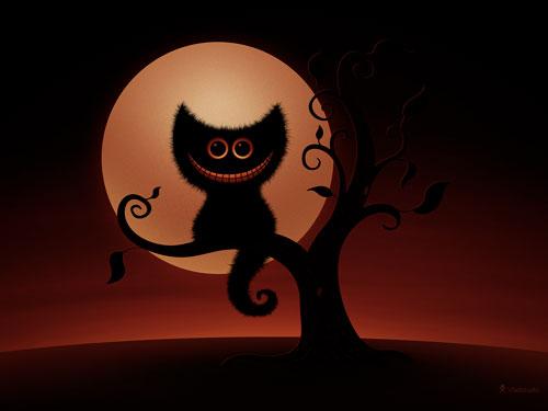 Un petit chat dans la nuit d'Halloween
