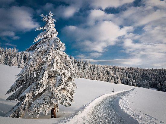 photographies de paysages d'hiver 122