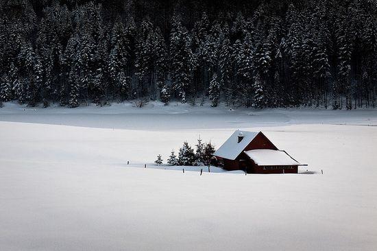 photographies de paysages d'hiver 151