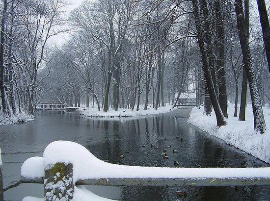 photographies de paysages d'hiver 18
