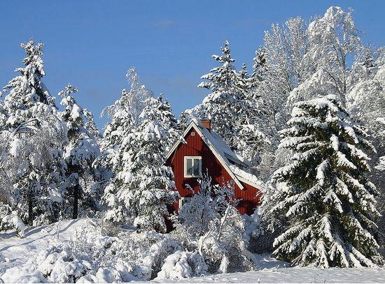 photographies de paysages d'hiver 201