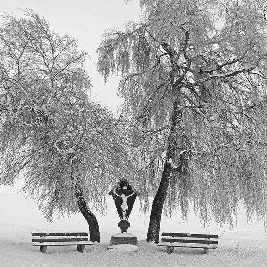 photographies de paysages d'hiver 221