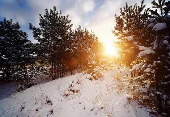 photographies de paysages d'hiver 231