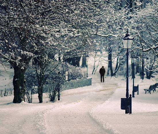 photographies de paysages d'hiver 261