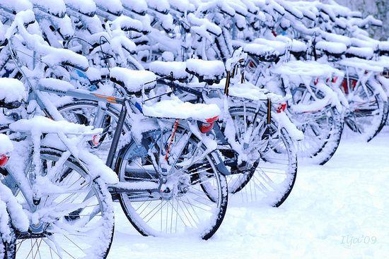 photographies de paysages d'hiver 301