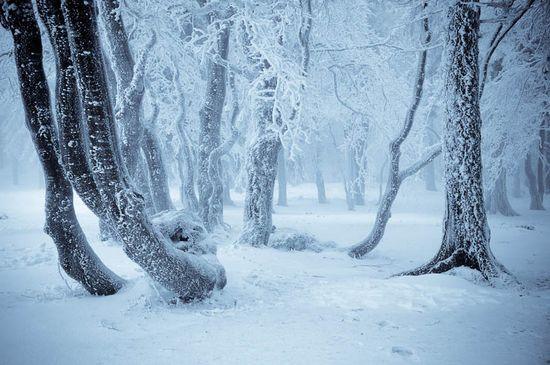 photographies de paysages d'hiver 521