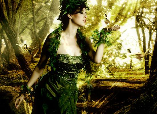 Une scène magique en pleine forêt en Photoshop