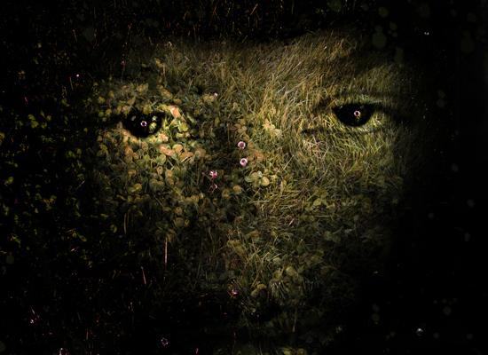 une image inspirée par la nature avec Photoshop