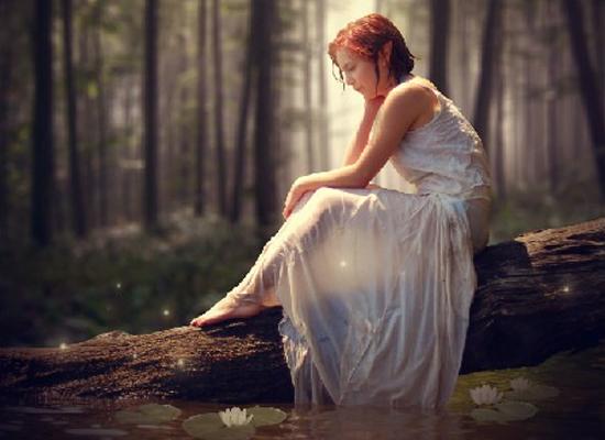 Photoshop : Photo d'une forêt magique