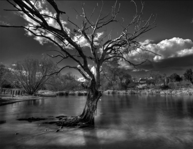 infrarouge photo