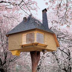 Thumbnail_treehouse