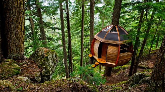 prenez-de-la-hauteur-avec-ses-somptueuses-maisons-perchees-dans-les-arbres38